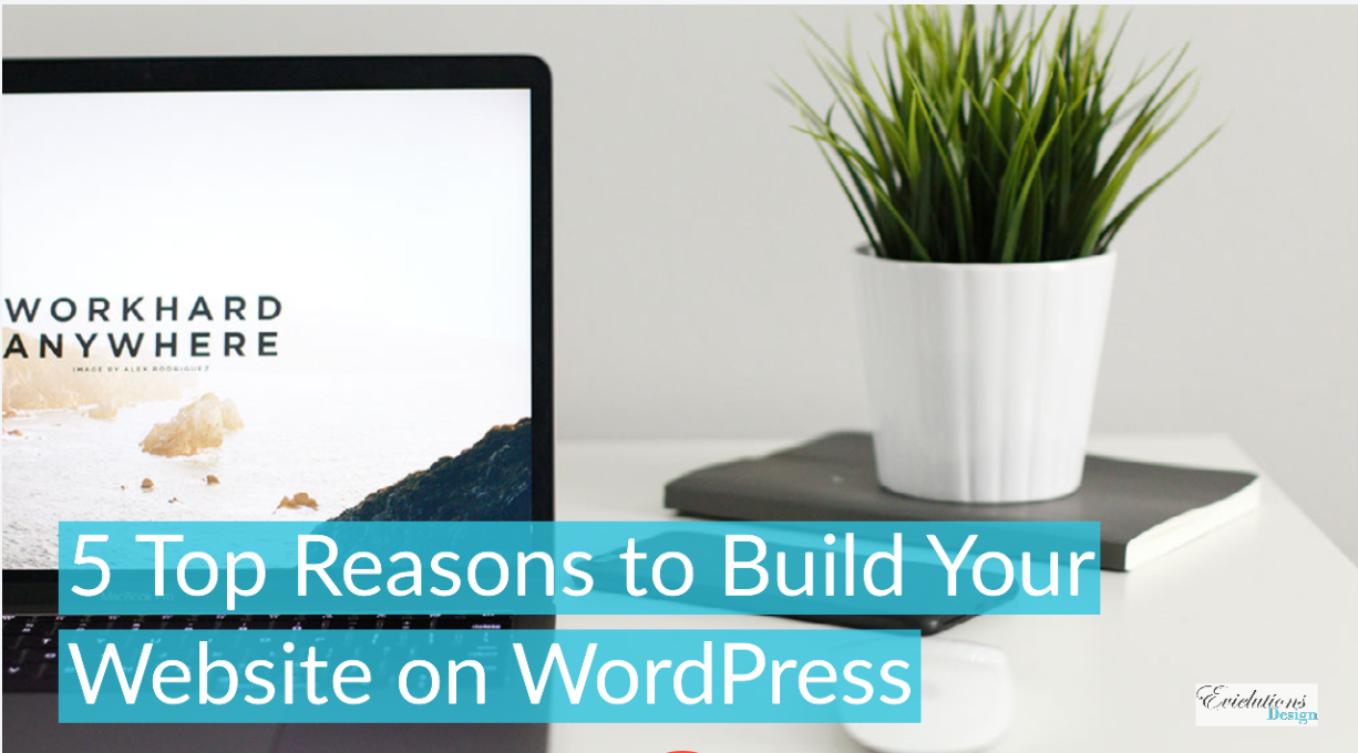 5 Top Reasons to Build Your Website on WordPress